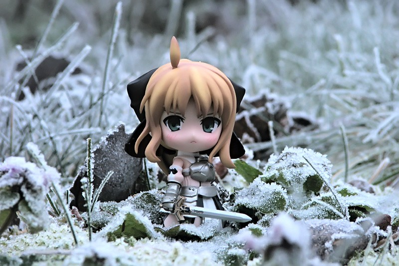 nendoroid saber_lily good_smile_company frost nendoron fate/unlimited_codes