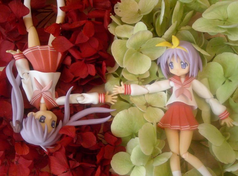 flowers red white hiiragi_tsukasa hiiragi_kagami lucky☆star