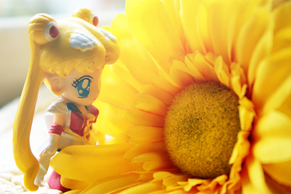 sailor_moon sunflower usagi tsukino