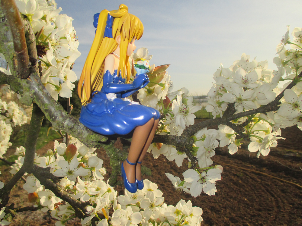 blond_hair ribbon dress sitting necklace high_heels shoes flowers kotobukiya elbow_gloves tights blue_dress cherry_blossom bouquet blue_gloves sitting_pose blue_shoes long_hair gloves blue_ribbon fate_testarossa evening cherry_blossoms mahou_shoujo_lyrical_nanoha_the_movie_1st murakami_haruhi tree_branch brown_tights hair_ribbon white_flowers pearl_necklace blue_high_heels fields fullface