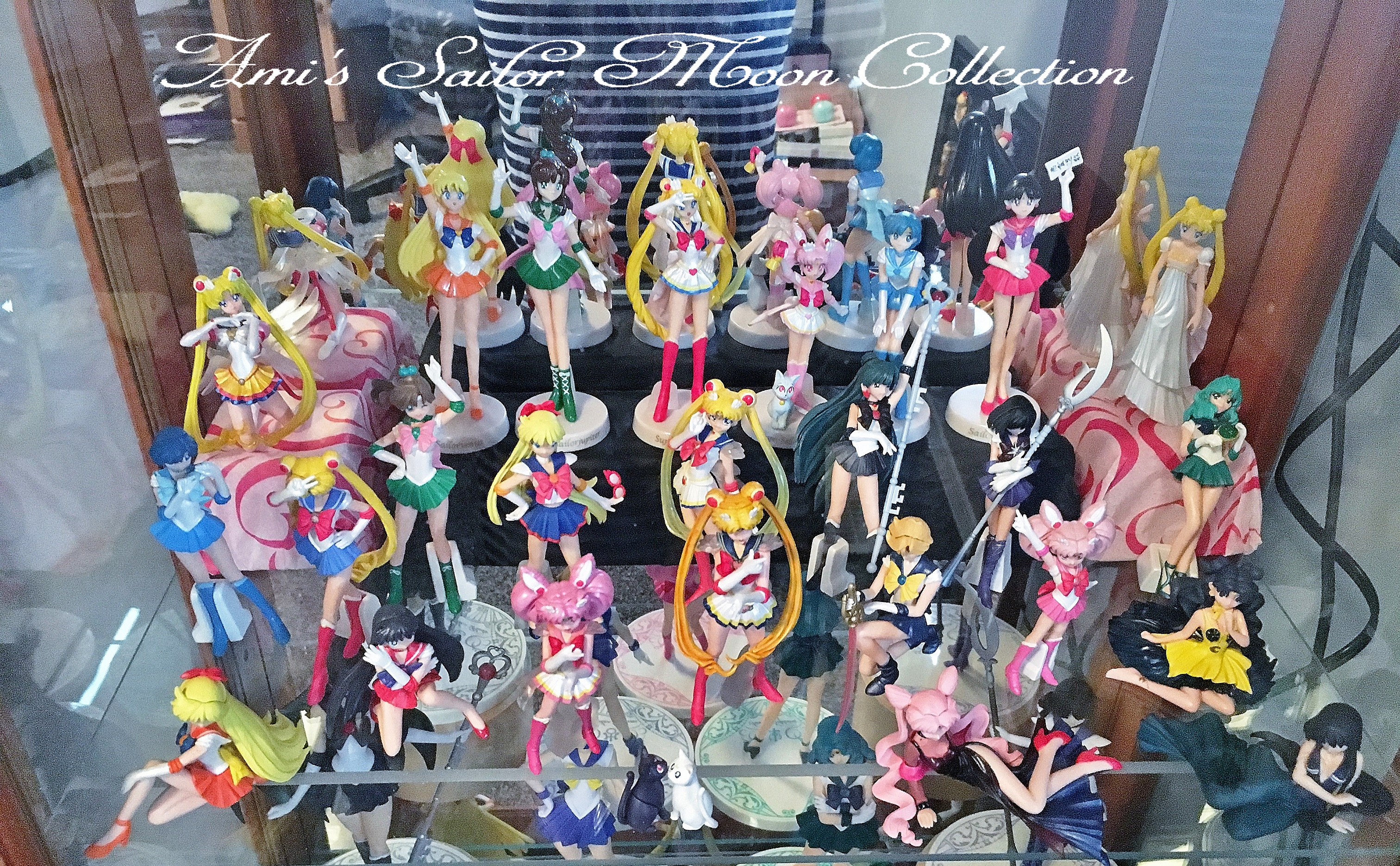 sailor_moon sailor_uranus sailor_neptune sailor_mars artemis luna hgif bandai sailor_venus sailor_pluto sailor_mercury sailor_jupiter princess_serenity bishoujo_senshi_sailor_moon bishoujo_senshi_sailor_moon_sailor_stars eternal_sailor_moon toei_animation takeuchi_naoko luna_(human_form) hgif_series_bishoujo_senshi_sailor_moon_world_5 sailor_chibi_moon super_sailor_moon diana black_lady sailor_v sailor_saturn mistress_9 bishoujo_senshi_sailor_moon_supers super_sailor_jupiter super_sailor_mercury super_sailor_mars super_sailor_venus bishoujo_senshi_sailor_moon_r hgif_series_bishoujo_senshi_sailor_moon_world_4 gekijouban_bishoujo_senshi_sailor_moon_s sailor_moon_world hgif_series_bishoujo_senshi_sailor_moon_world_3 hgif_series_bishoujo_senshi_sailor_moon_world_2 hgif_series_bishoujo_senshi_sailor_moon_world doll_collection_~sailor_moon~ bishoujo_senshi_sailor_moon_s super_sailor_chibi_moon