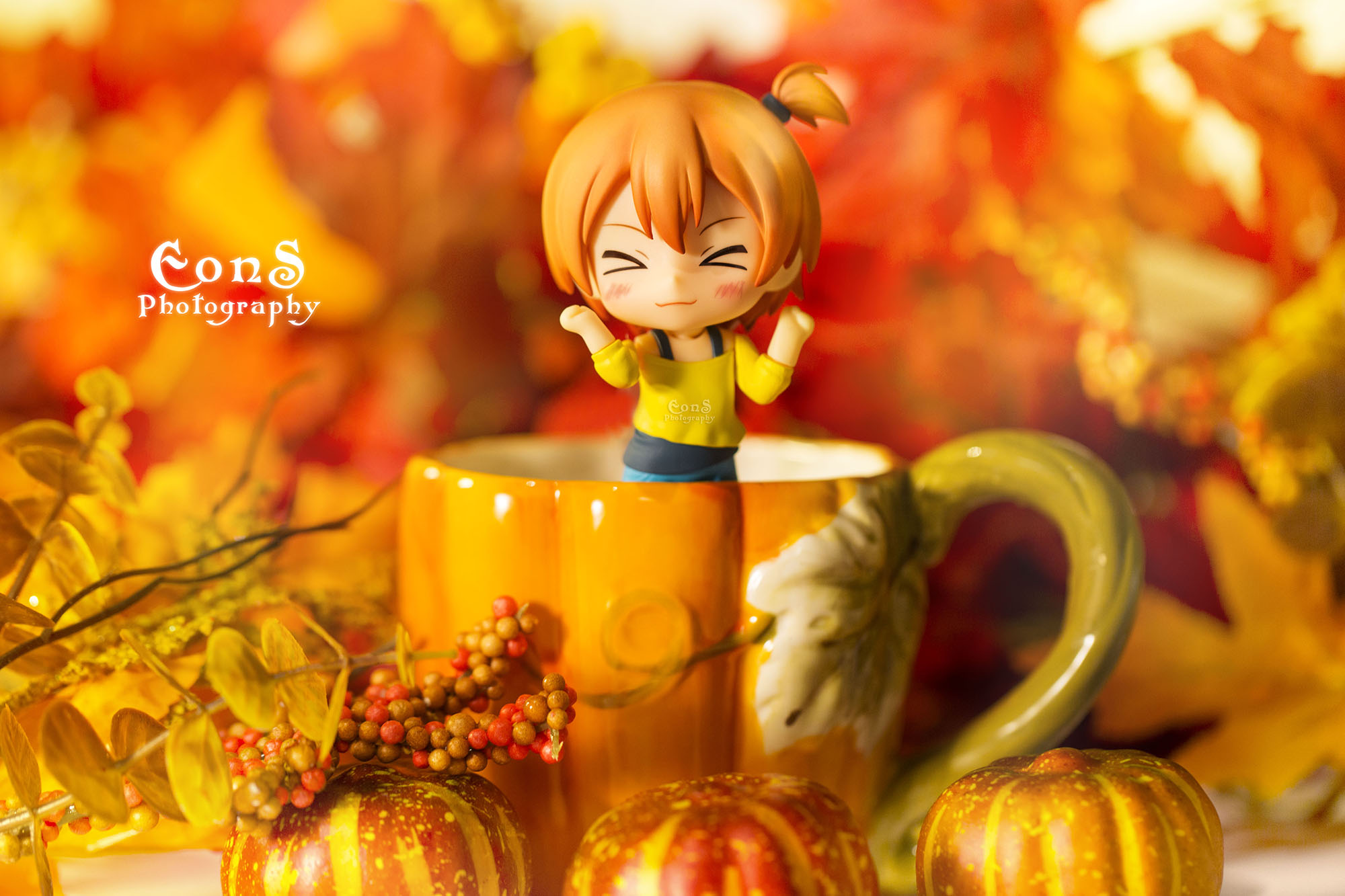 nendoroid good_smile_company nendoron love_live!_school_idol_project hoshizora_rin shichibee nd_dog imai_yuuichi