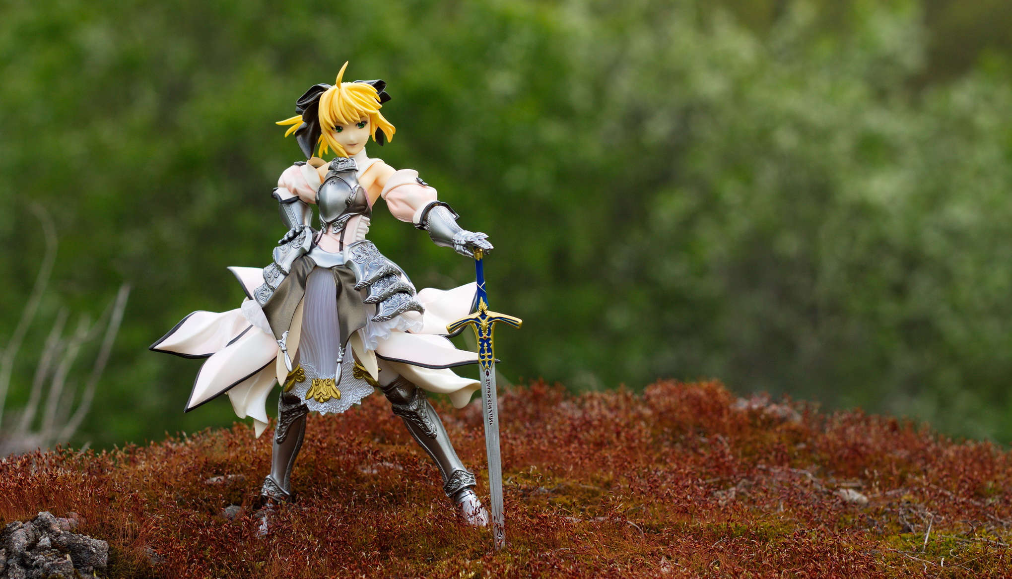gift type_moon saber_lily fate/unlimited_codes toda_satoshi