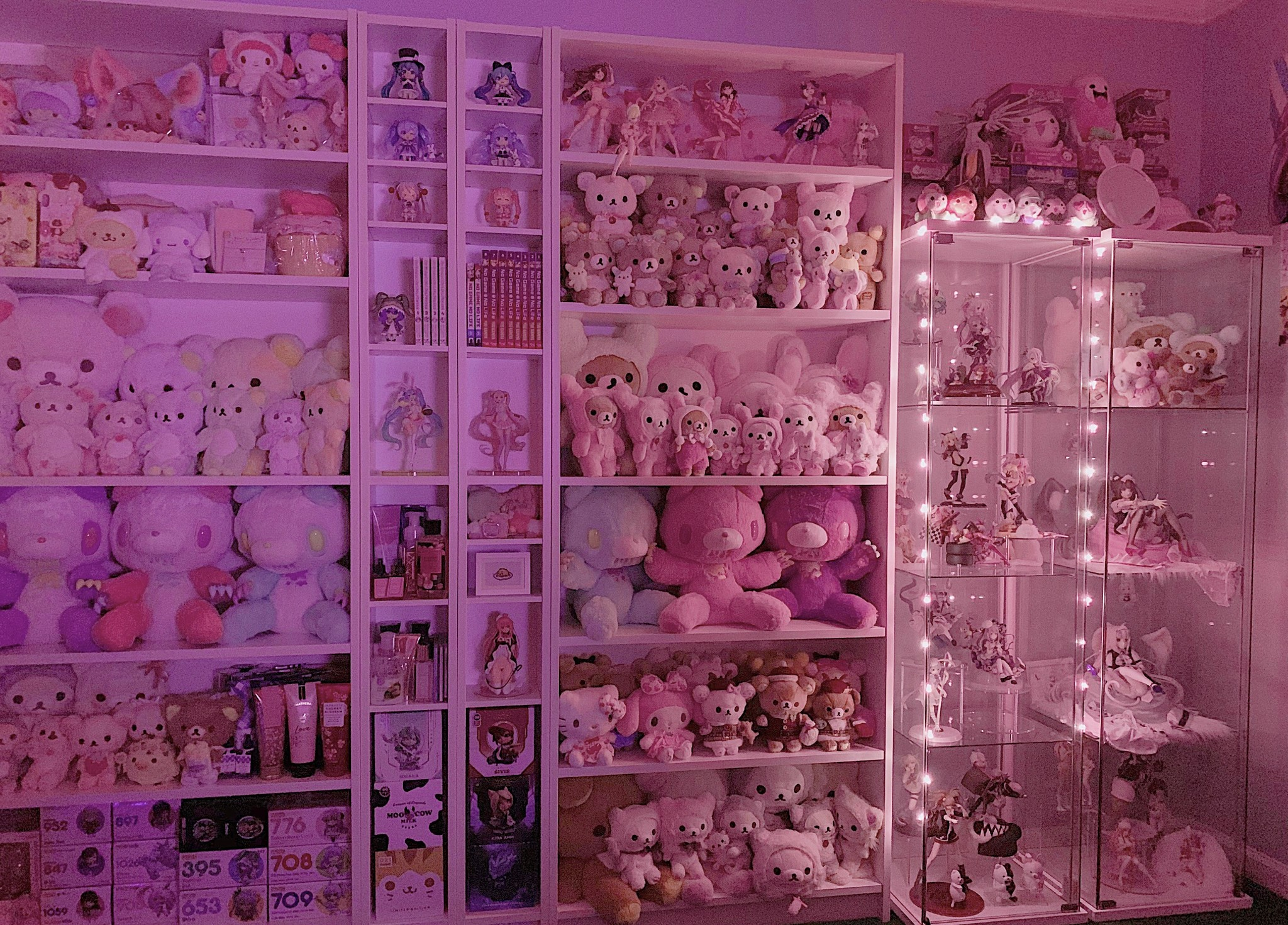 My collection & display ♡
