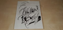 Iczer Collection
